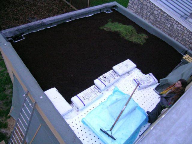 Etape 4 : Mise en place du support de culture 3/4 - Toit terrasse végétalisé - étape par étape
