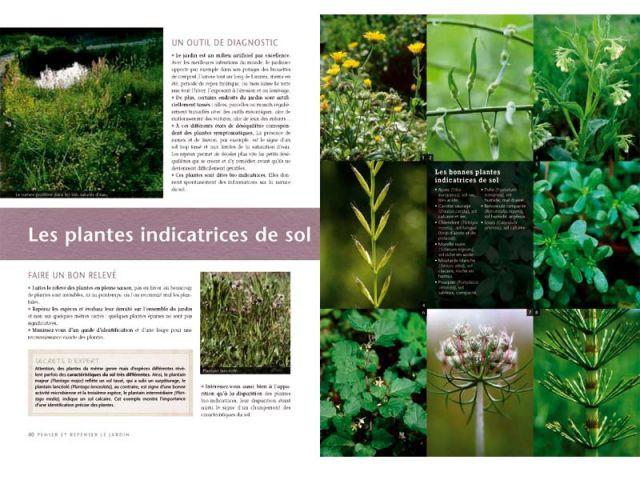 Les plantes indicatrices de sol - Truffaut du jardin écologique