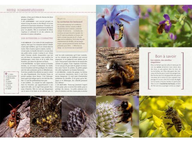 Zoom encyclopédique - Truffaut du jardin écologique