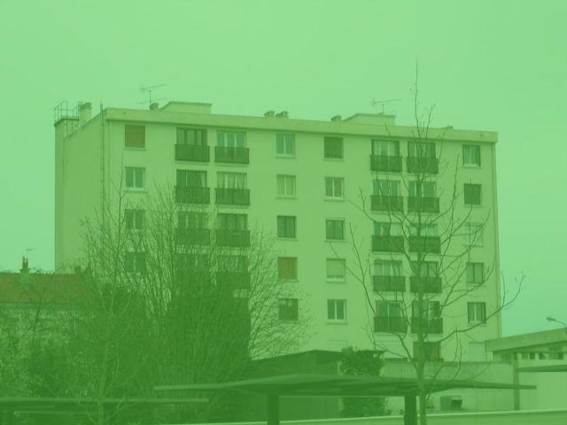 immeuble vert