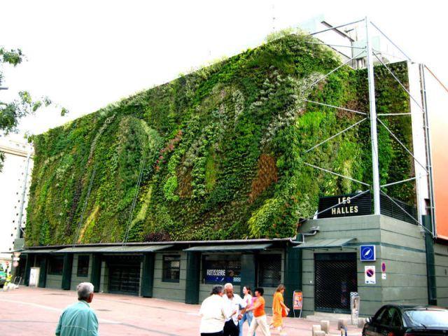 Halles - Patrick Blanc - Le Mur Végétal