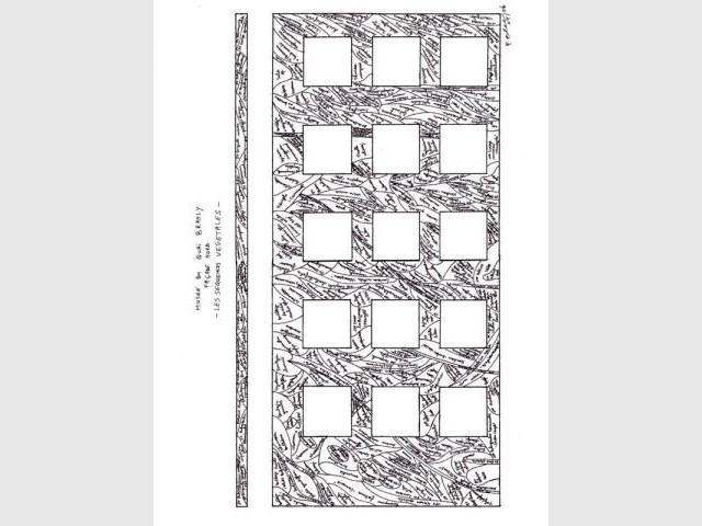 Plan de plantation - Patrick Blanc - Le Mur Végétal