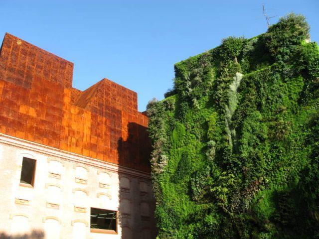 Musée - Patrick Blanc - Le Mur Végétal