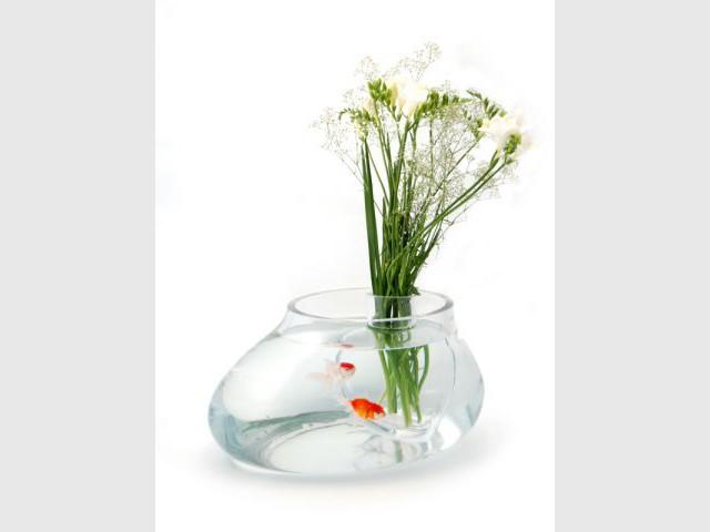 Aquarium - 5.5 designers