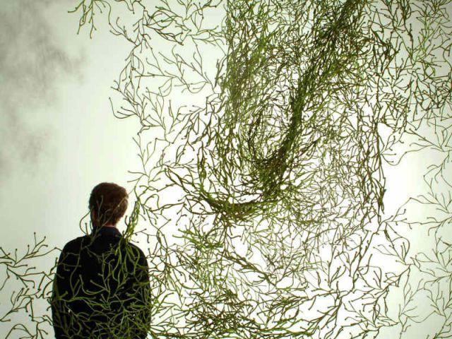 Les Algues - Ronan et Erwan Bouroullec