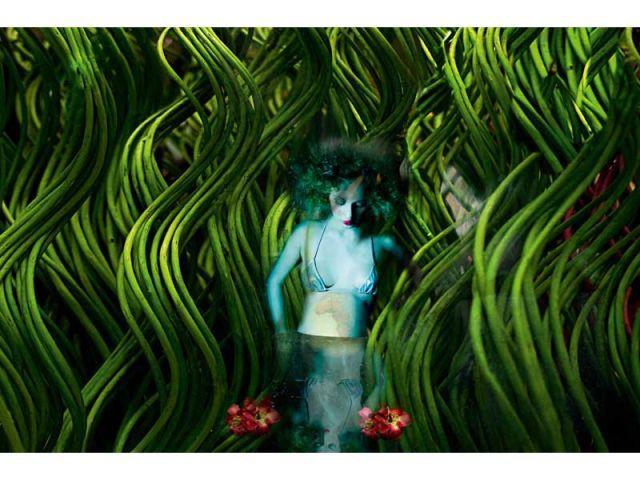Nathalie Bermudes - art par nature miele