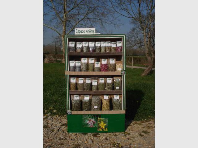 présentoir pour plantes aromatiques en carton