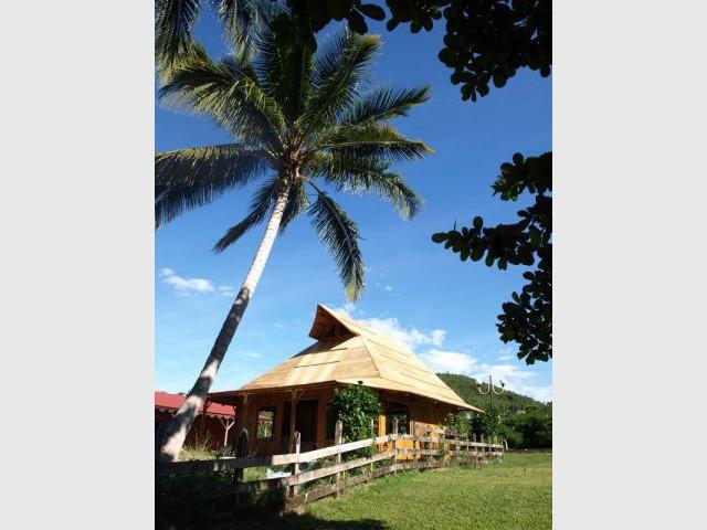 Maison bambou, la nouvelle tendance ? - maison bambou