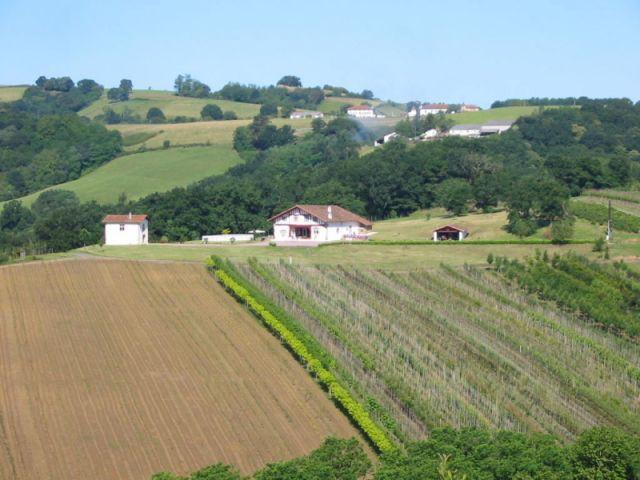 La vue générale du domaine - maison basque