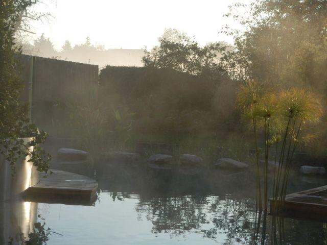 piscine naturelle - l'Orangerie