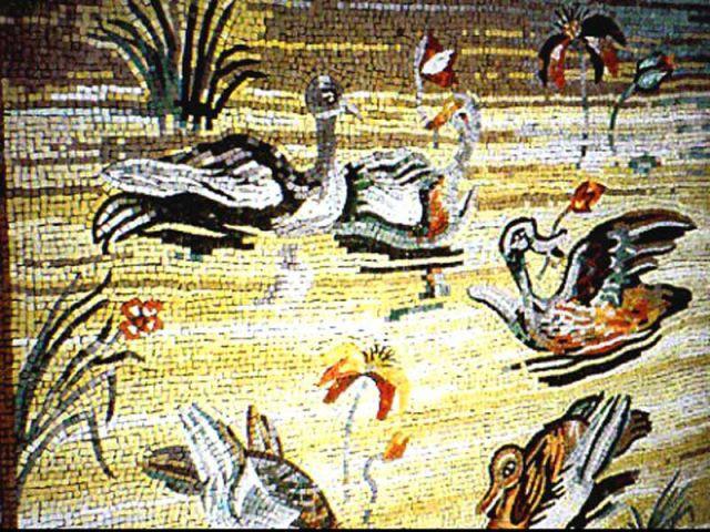 canard mosaïque
