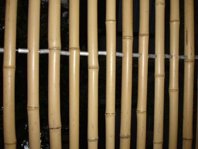 Bambou non traité - maison passive certifiée