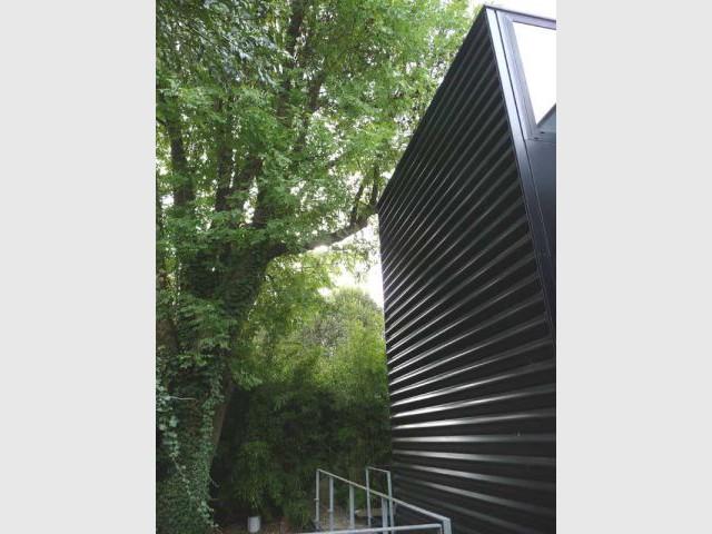 Sous-bois - Maison d'architecte verre et métal