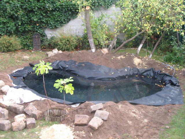 Liner - Bassin jardin