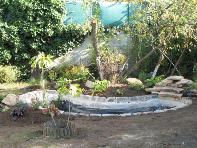 Avant apr s 1 bassin pour redonner vie 1 jardin for Combien coute un bassin de jardin