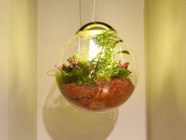Une nature lumineuse - Gallery S. Bensimon