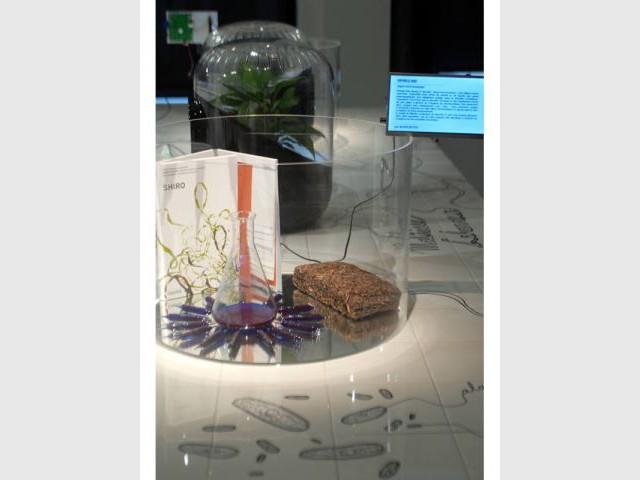 Vue de l'exposition - le lieu du design - Inspired by nature