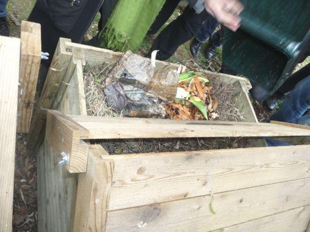 Déchets compostables - compost