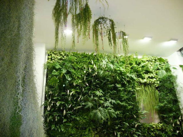 Lieu d'exposition - Murs végétaux - Les Jardins de Babylone