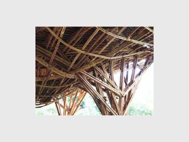 1 centre éducatif contemporain en bambou