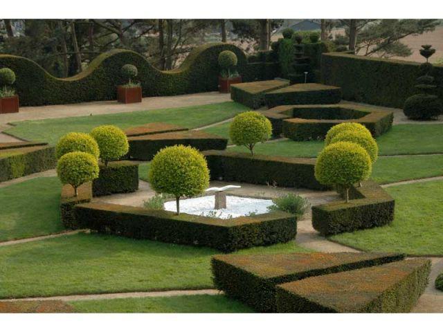 L 39 art topiaire ou comment tailler avec art for Jardins exceptionnels