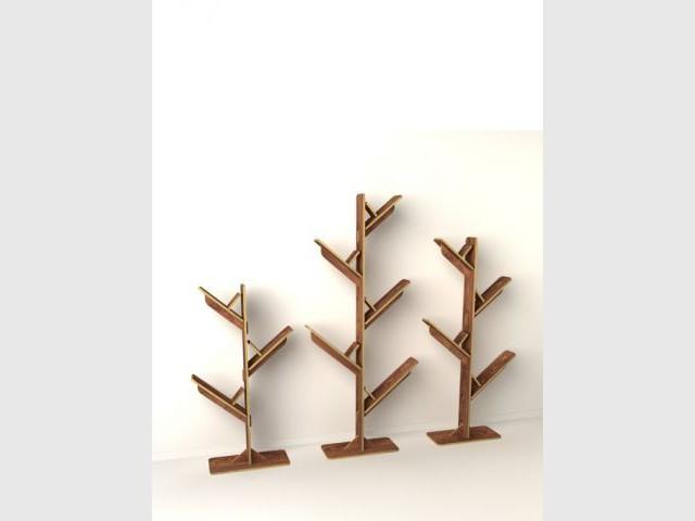 Knowledge tree  - L'Edito