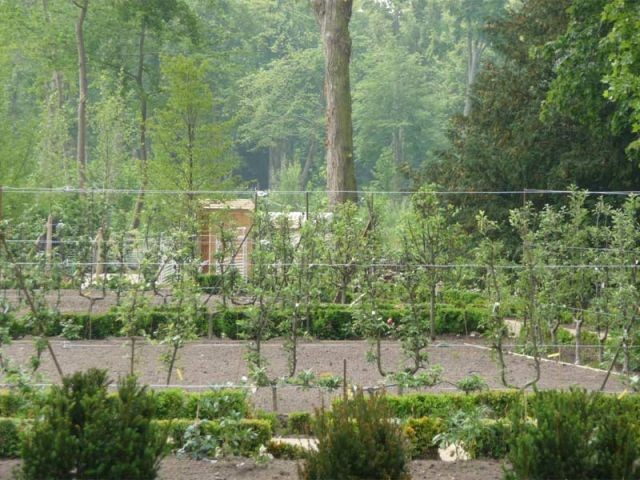 jardin Cocteau