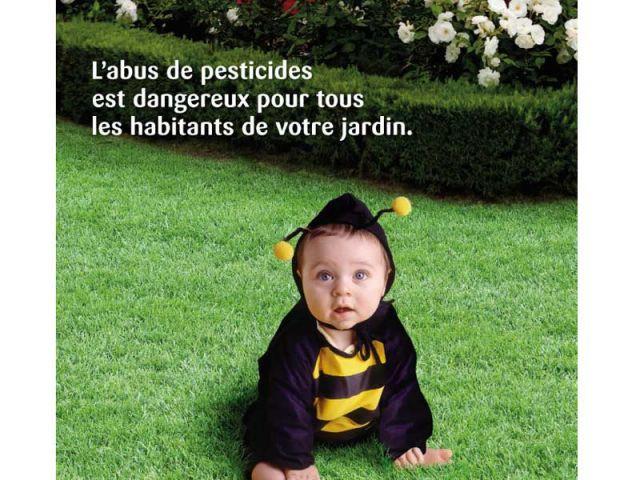 jardin bébé abeille