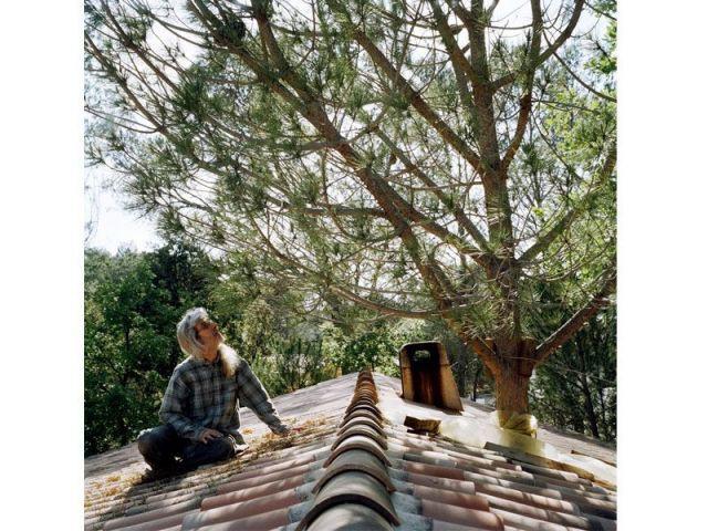 Perché sur le toit