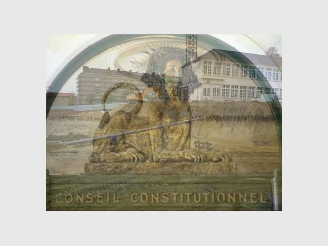 Conseil constitutionnel terrain