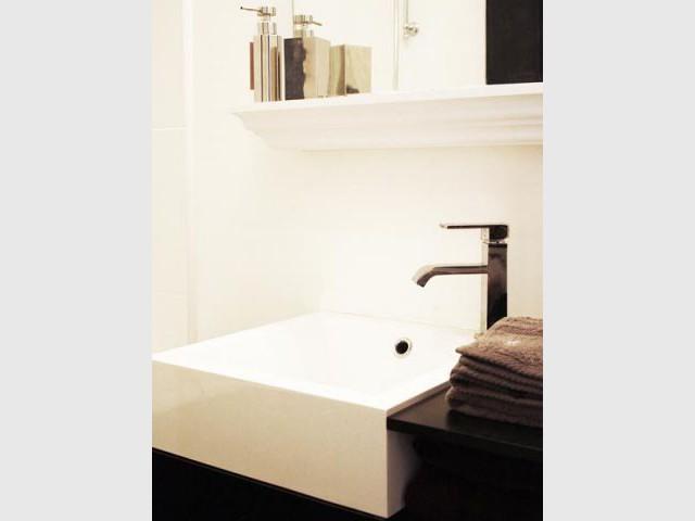 Vasque - Appartement parisien hôtel