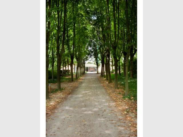 Allée - Villa Beausoleil