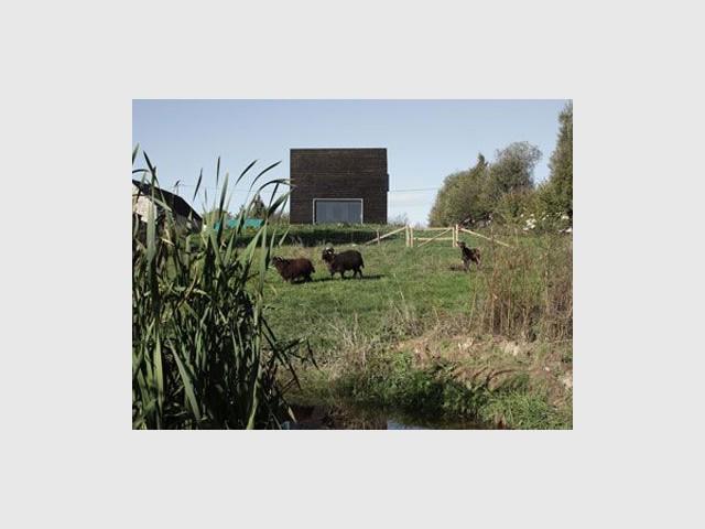Bocage normand - cube noir
