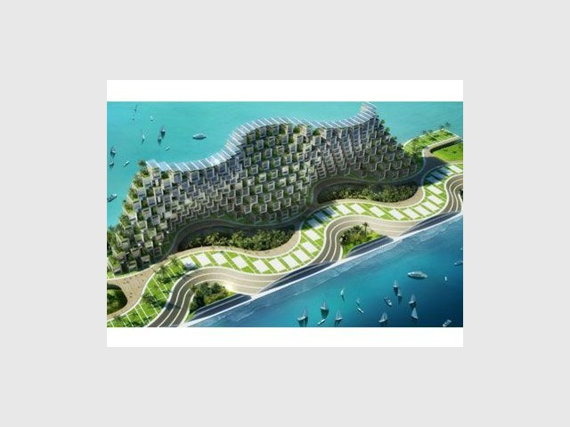 Ondulations - Coral reef