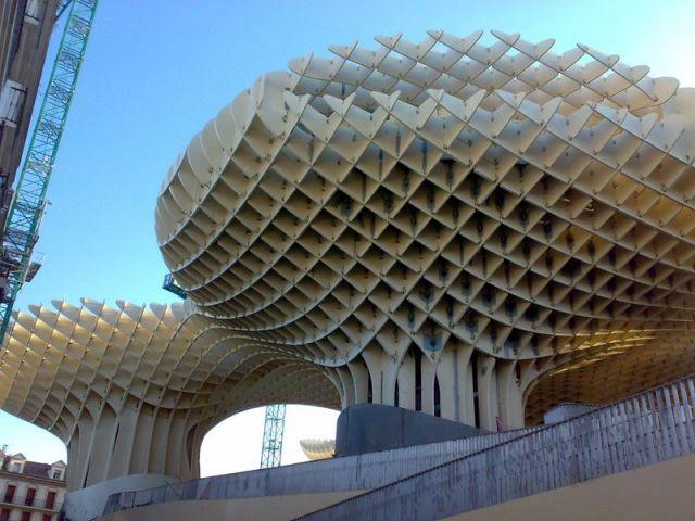 D'après l'architecte ces champignons peuvent représenter des Chanterelles - Parasol Seville Finnforest
