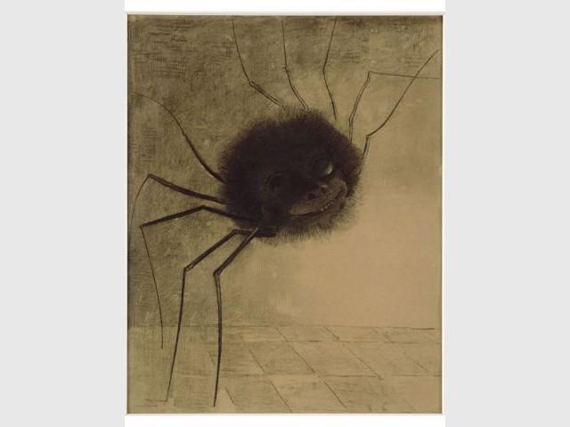 Araignée ou Araignée souriante