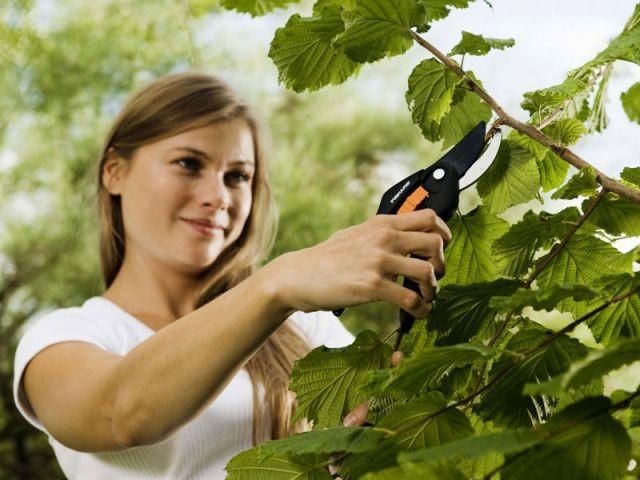 Le grand ménage de printemps... pour le jardin - Préparer son jardin au printemps