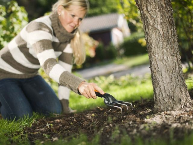 Nourrir le sol pour qu'il nourrisse les plantes - Préparer son jardin au printemps