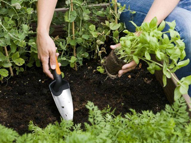 Préparer son jardin au printemps