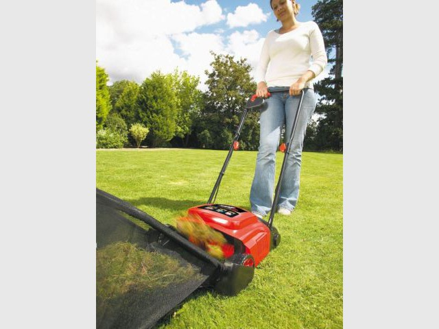 Se débarasser de la mousse - Préparer son jardin au printemps