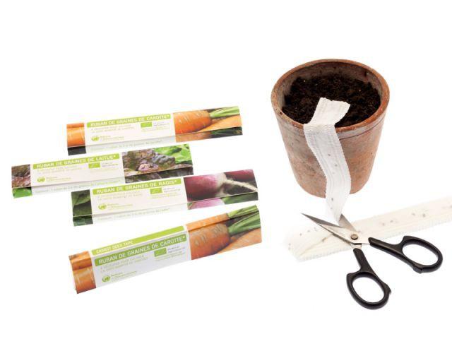 Semer des graines facilement - Préparer son jardin au printemps