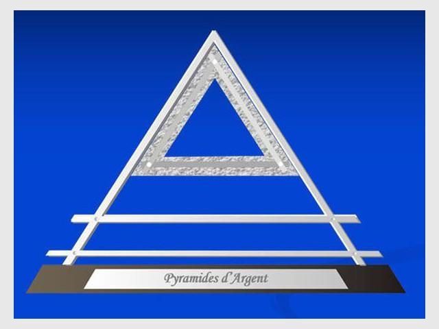 pyramides d 39 argent idf 2011 des logements neufs r compens s. Black Bedroom Furniture Sets. Home Design Ideas