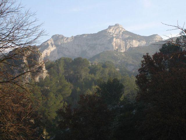 Le Gaussier dans les Alpilles