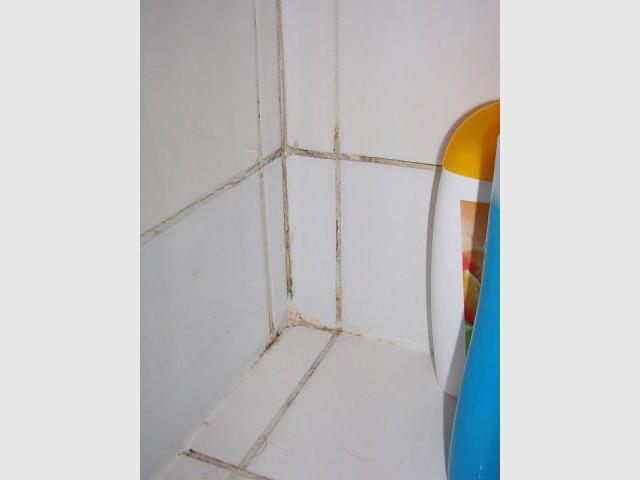 Rendre leur blancheur aux joints du carrelage - Entretien salle de bains