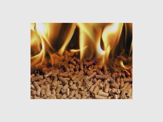 Le rendement d'un chauffage à granulés - Propellet