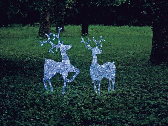 Animaux de Noël - noel