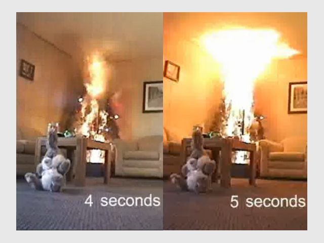 Incendie sapin