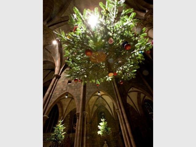 Le sapin de Noël de la région de Sélestat, en Alsace - Tour de France décoration Noël