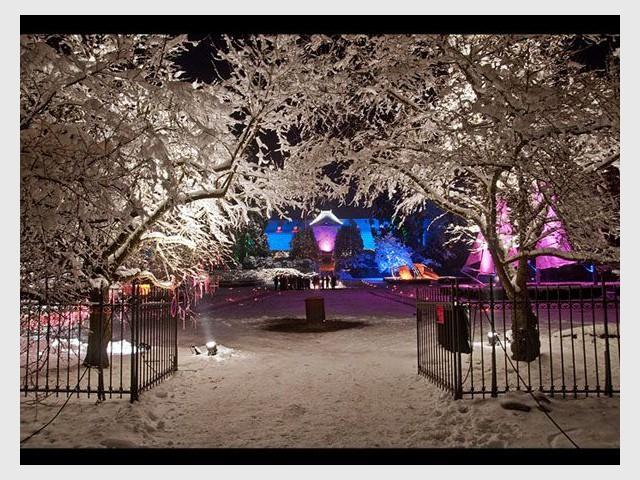 Noël au jardin - Entrée - Noël au jardin