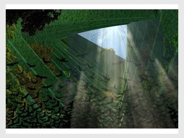 Sea Tree intérieur